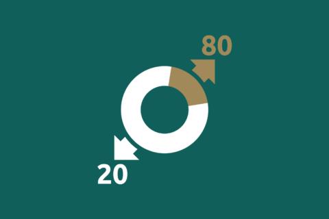 Pareto's 80/20 rule